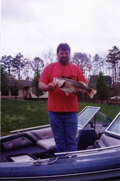 over 7 lbs b4 the Florida strain was stocked