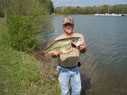 HMBC TX MAY 2011 